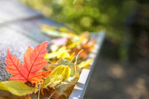 Time for Fall Furnace Maintenance in The Woodlands Already? You Bet!