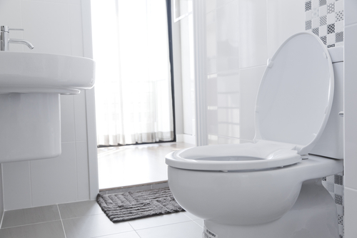How Do You Know When To Replace Your Toilet Bradbury Brothers