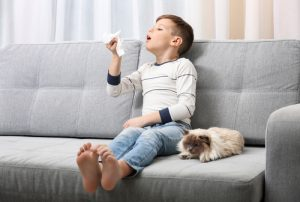 Beating Summer Allergies with Whole-House Air Filtration